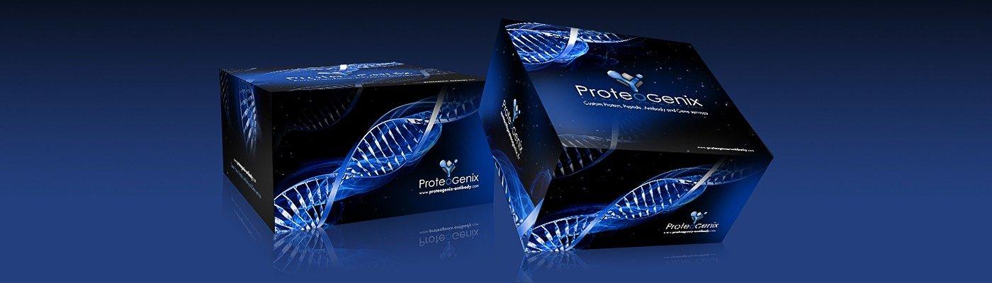 Welcome to ProteoGenix