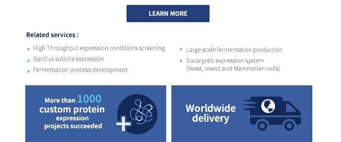 Related services: high throughput expression conditions screening, bacillus subtilis expression, fermentation process development, large scale fermentation production, eucaryotic expression system (yeast, insect and mammalian cells) | More than 1000 custom protein expression projects succeeded, Worldwide delivery