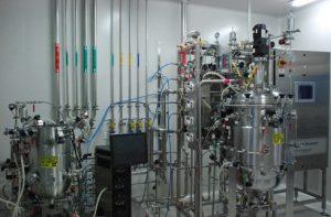 Process development in bioreactors